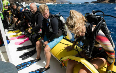 What to Expect on a Boat Dive