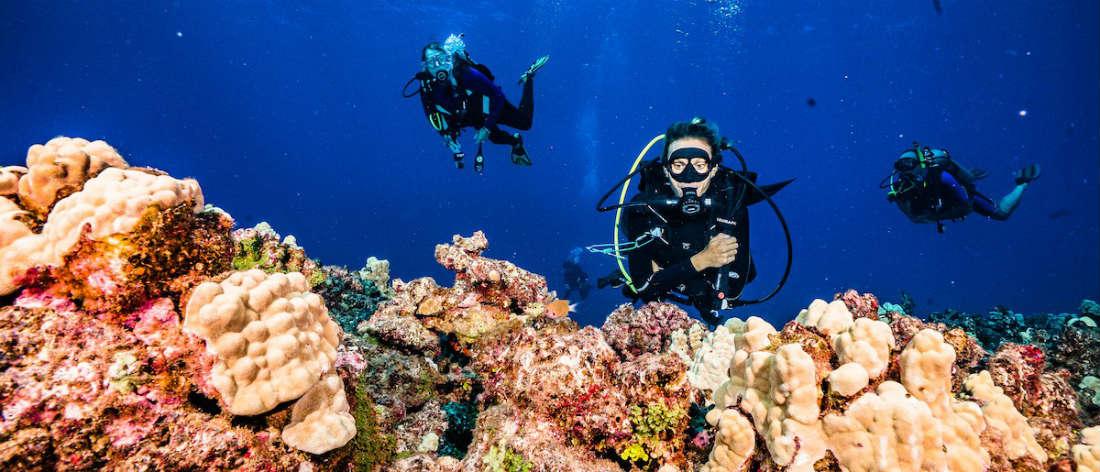 shore diving maui