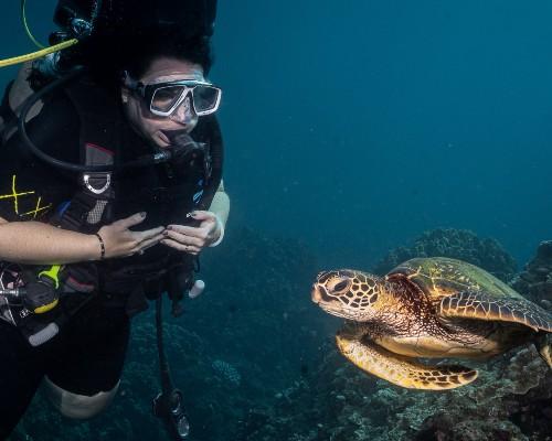 Carthaginian wreck diving