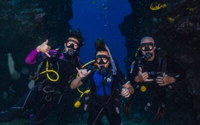 9 Questions All Beginner Divers Have About Diving