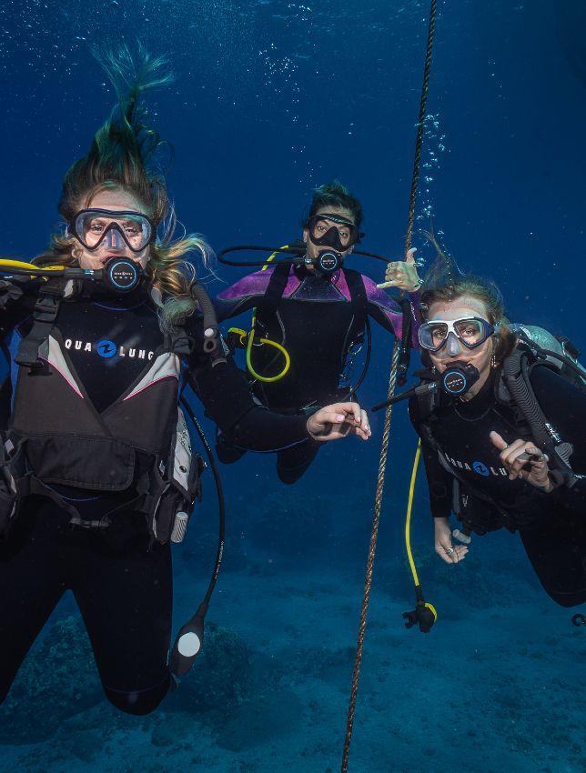 Book Dive Course Maui