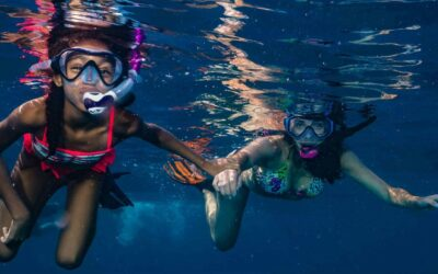 Snorkeling Vs. Diving: Which is Right for You?