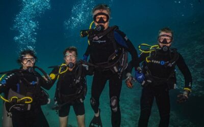 Four Mistakes Most New Divers Make Will Make (And How to Avoid Them)